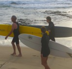 Surfboards | Coastal Curves